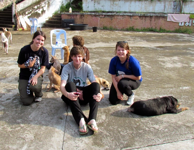 My friends and I at the dog rescue centre in Thailand. I'm holding a tiny puppy in that blanket.
